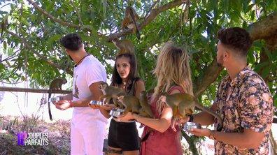 Des singes agressent Maïssane dans l'épisode 40