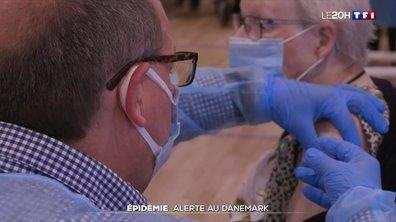Variant britannique : la méthode danoise face au rebond de l'épidémie