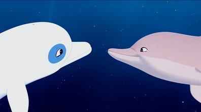 Oum Le Dauphin Blanc - Les nouveautés de la saison 2 - Encore plus d'animaux !