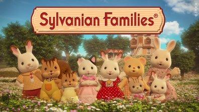 Sylvanians - S02 E12 - Un heureux événement