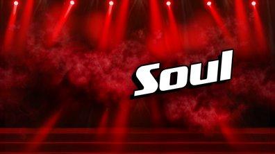 The Voice - Le meilleur de la Soul