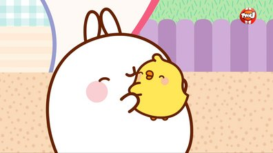 Molang :  Replay
