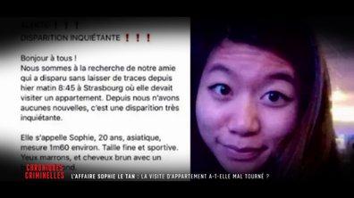 Affaire Sophie Le Tan : les messages troublants de deux autres jeunes femmes