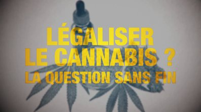 Quotidien ++ : légaliser le cannabis ? La question sans fin