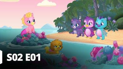Hatchimals - S02 E01 - Les vœux de la cascade