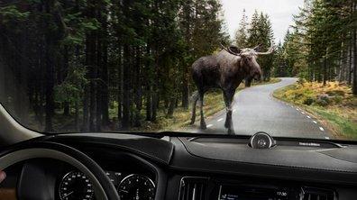 L'intérieur de la Volvo S90 se dévoile en vidéo