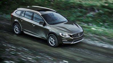 Volvo V60 Cross Country 2014 : le break familial part à l'aventure