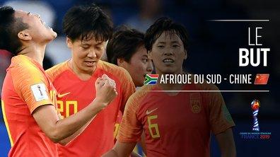 Afrique du Sud - Chine (0 - 1) : Voir le but de Li en vidéo