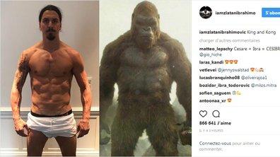 Zlatan Ibrahimovic se la joue King Kong (et il est très affûté)