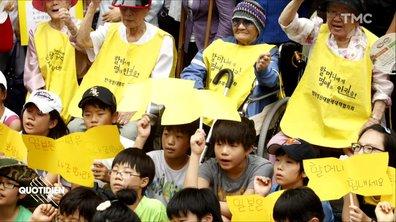 Zoom : des gilets jaunes en Irak, en Corée du sud, en Grèce… histoire d'un symbole