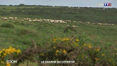Zoom : le charme du Cotentin