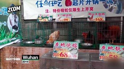 Zoom : pourquoi les Chinois mangent-ils des animaux sauvages ?