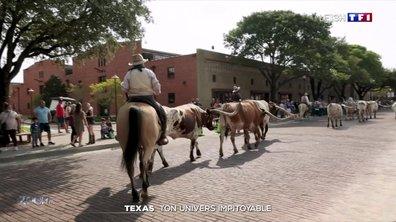 Zoom sur le Texas et son univers impitoyable