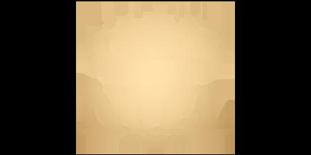 logo Le Merveilleux Village de Noël