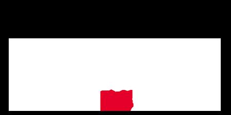 logo Coupe du Monde de Rugby
