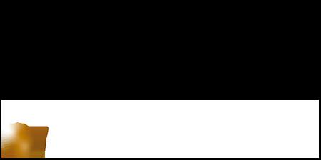 logo Handball - TQO