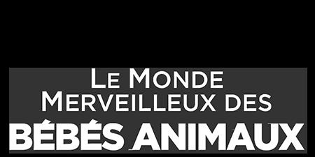 logo Le monde merveilleux des bébés animaux