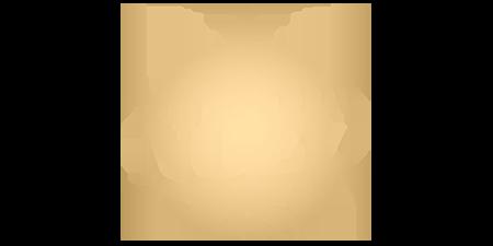 logo Mon plus beau Noël