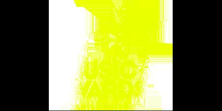 logo NRJ Music Awards