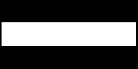 logo Texas