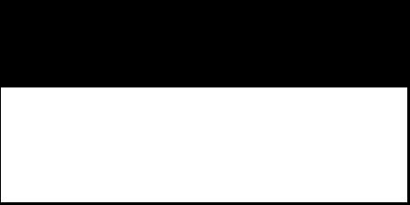 logo The Runner