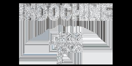 logo Indochine - 13 Tour