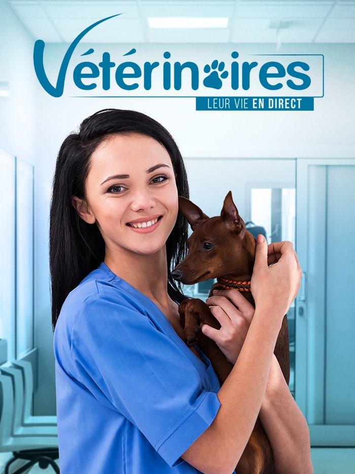 Vétérinaires : Leur vie en direct