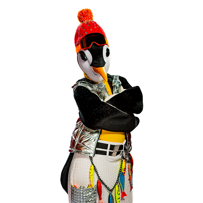 premier plan Mask Singer