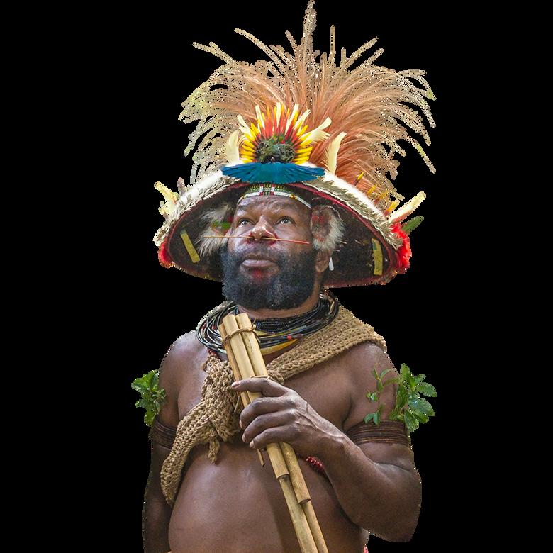 premier plan Frère des arbres , l'appel d'un chef Papou
