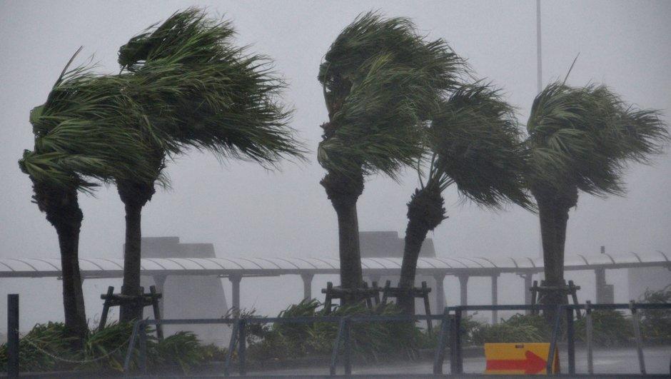 Le match Irlande-Samoa menacé par un typhon