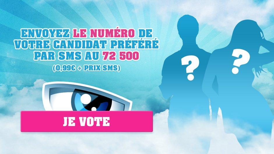 secret-story-11-votez-candidat-prefere-6036497