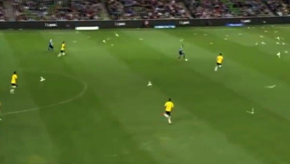 VIDEO #Insolite : les mouettes et les footballeurs