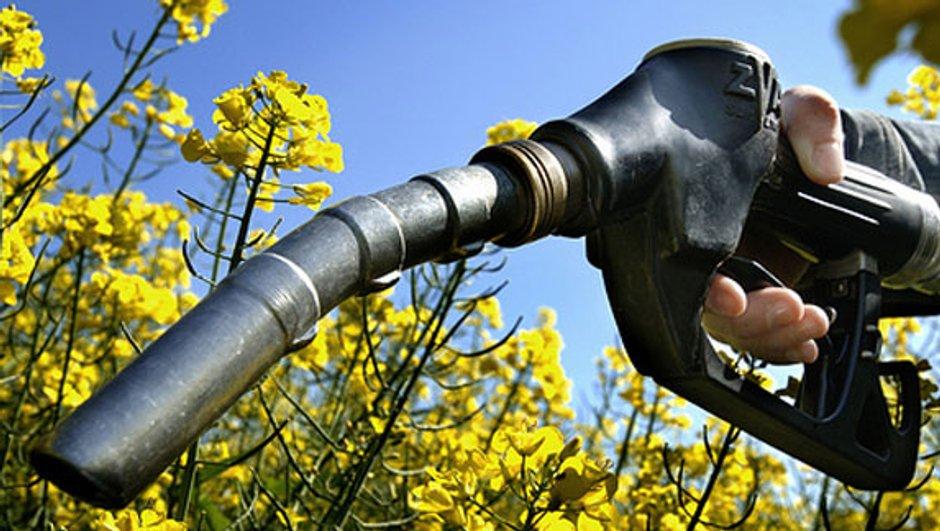 prix-carburants-plus-bas-4-ans-3249010