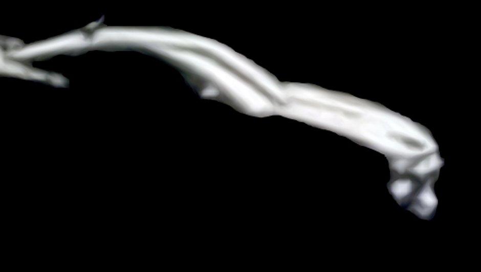 Chevrolet Camaro 2016 : premier image officielle