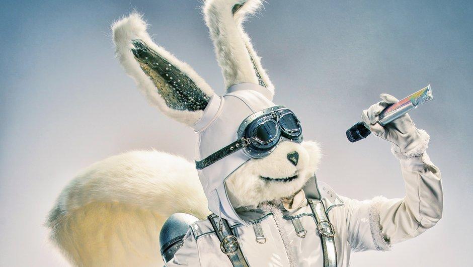RÉVÉLATION - Qui est Ecureuil de Mask Singer ?