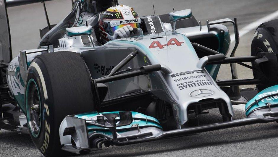 F1 - GP d'Abu Dhabi 2014 : Hamilton et Mercedes confirment lors des essais libres 2