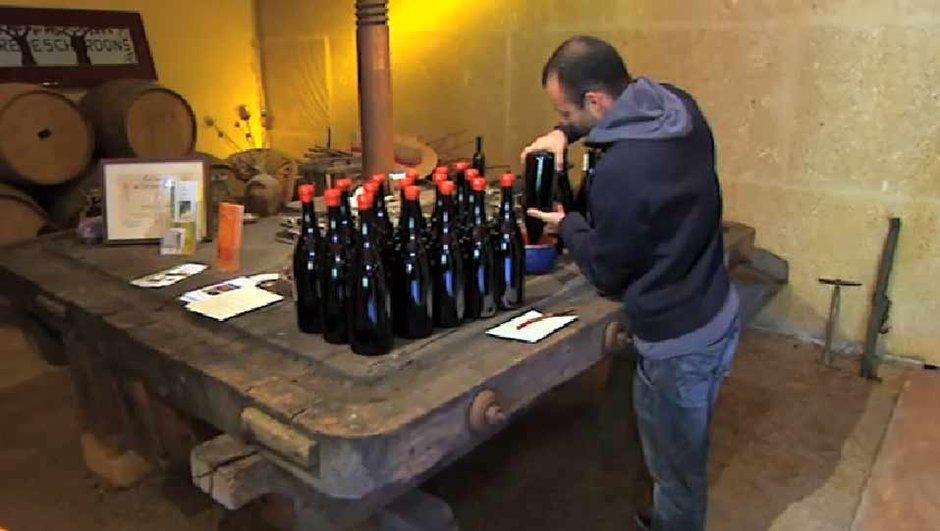Foire Aux Vins : quel vin choisir pour quel plat ?