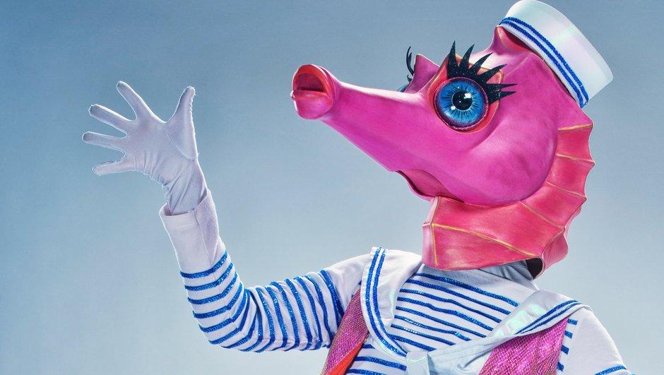 RÉVÉLATION - Qui est Hippocampe de Mask Singer ?