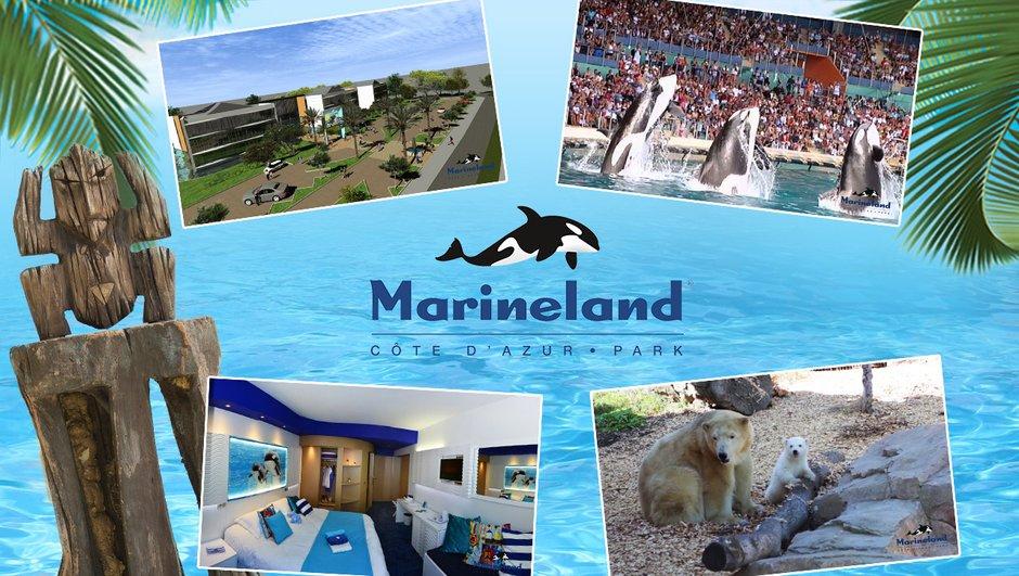 soir-participez-jeu-concours-koh-lanta-marineland-0818996