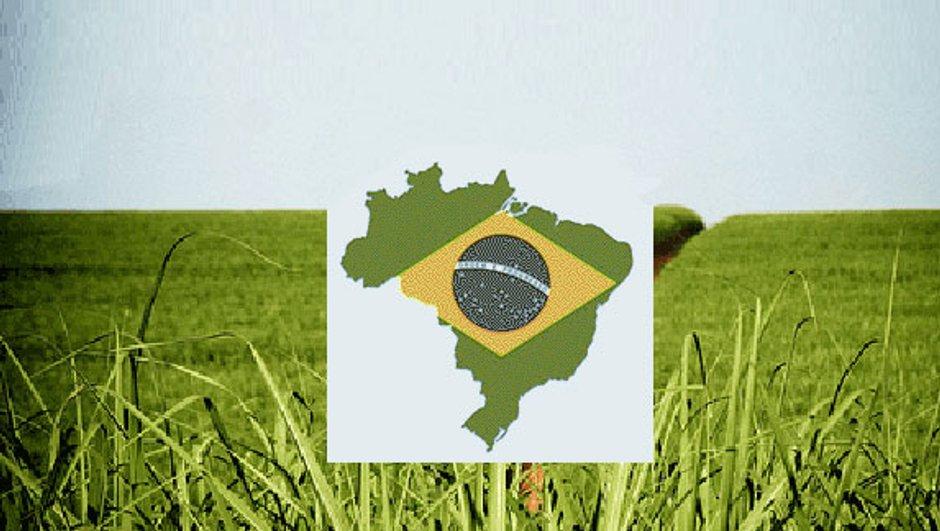 Brésil : l'éthanol est plus vendu que l'essence !