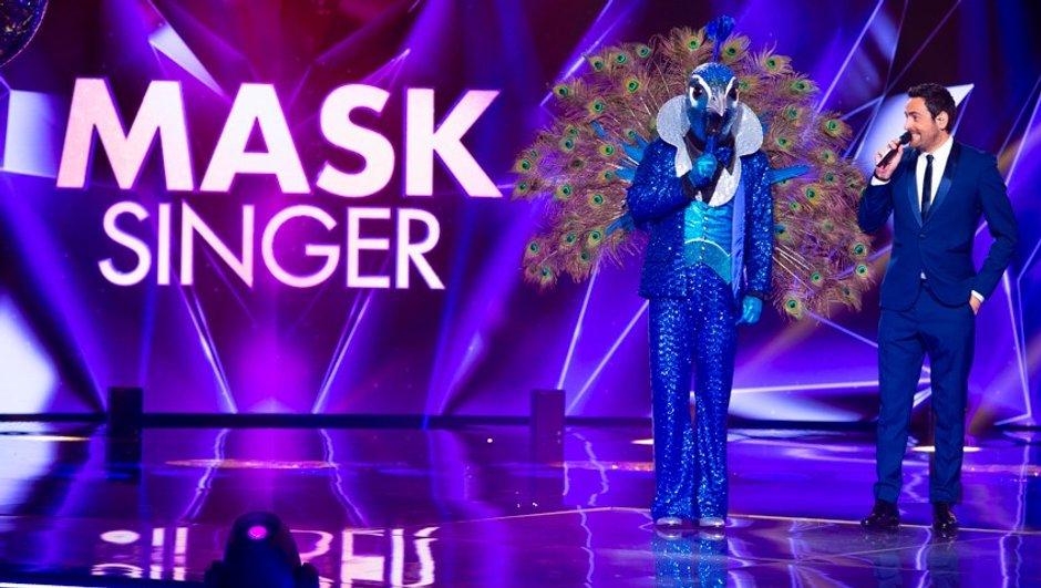 Mask Singer - Comédiens, chanteurs, sportifs, politiques... Les premiers indices sur le casting de célébrités