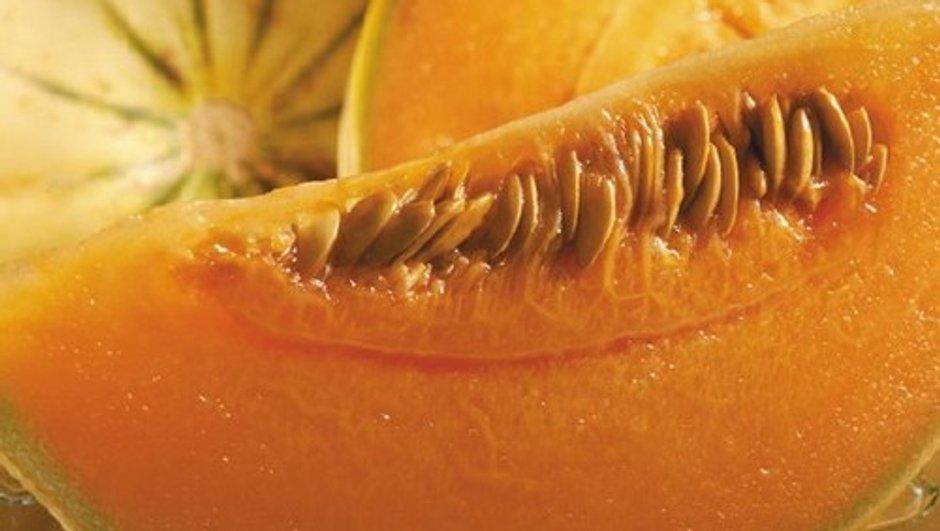 Quelques conseils pour bien choisir son melon