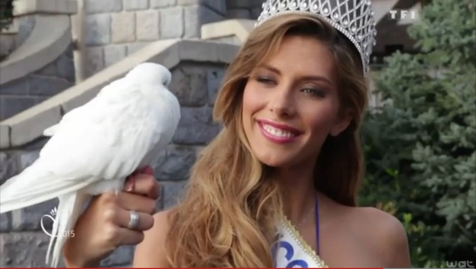 Les premières Miss régionales ont déjà été élues