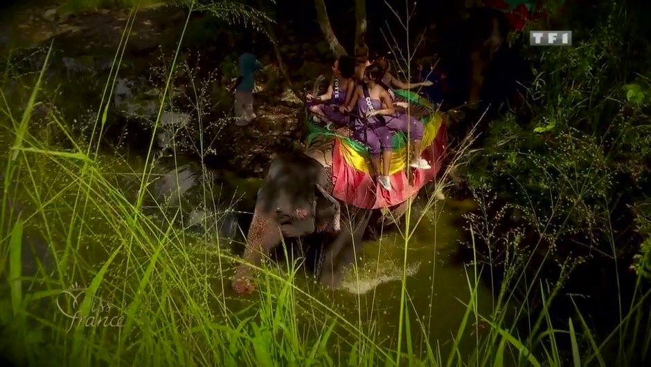 Miss France 2014 : les Miss à dos d'éléphant !