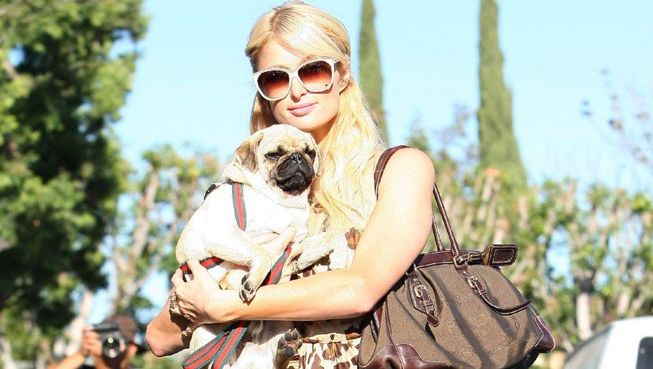 Paris Hilton croyait que la cocaïne dans son sac était du chewing gum !