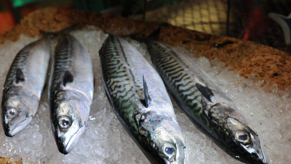 Ecailles, arêtes, filets : conseils pour préparer un poisson