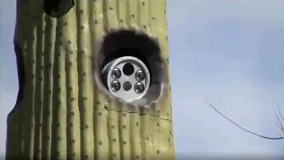 Insolite : Des radars cachés... dans des faux cactus !