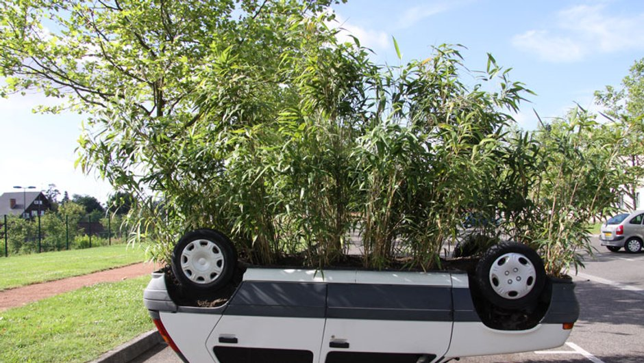 Insolite : découvrez la voiture pot de fleurs de Riorges
