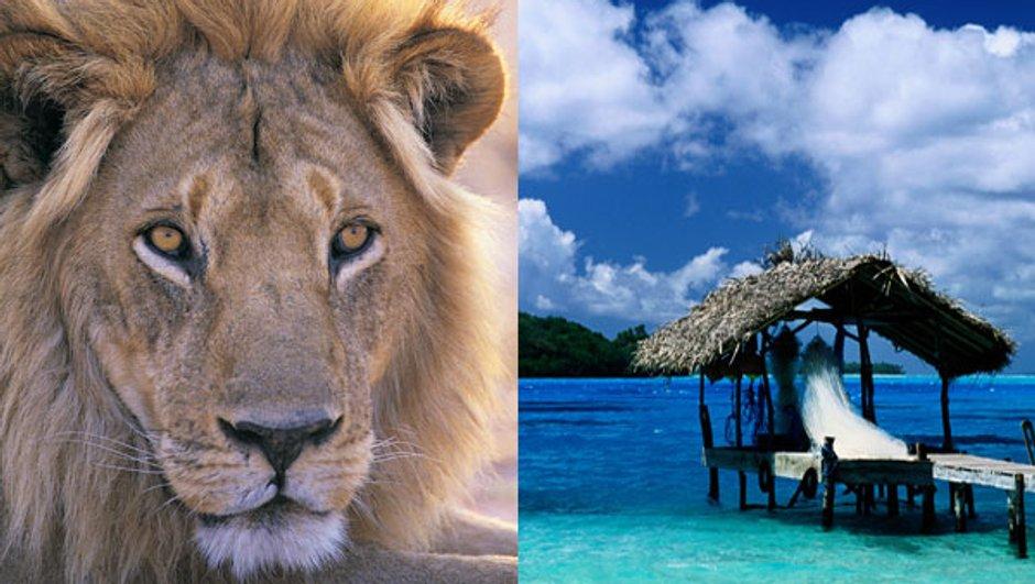 Kenya ou Tahiti ?
