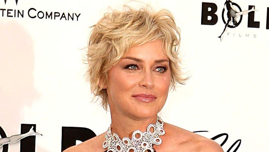 New York Unité Spéciale : Sharon Stone et Mischa Barton en guest-star
